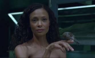 Temná strana Hollywoodu, aneb herečka Thandie Newton se podělila o své zážitky | Fandíme filmu