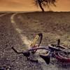 The Chain: Místo řetězových dopisů přichází na řadu řetězový únos dětí   Fandíme filmu