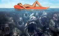 Filmy, po kterých už nikdy nebudete chtít jít na pláž   Fandíme filmu