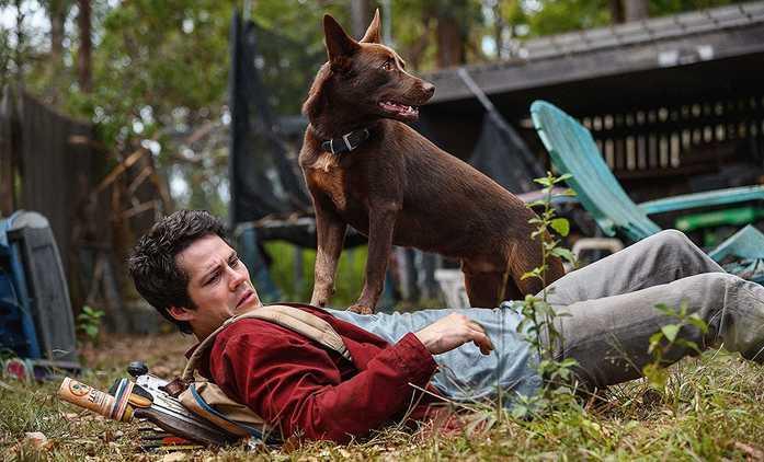 Láska a příšery: Netflix nabídne postapokalypticou sci-fi s oscarovou nominací | Fandíme filmu