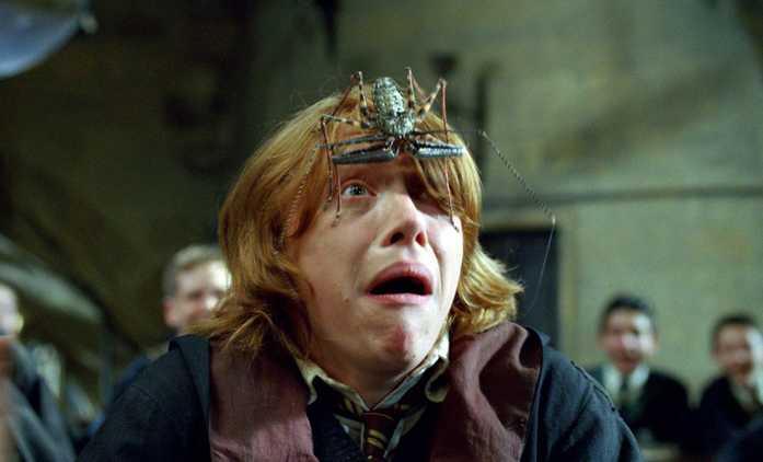 Harry Potter: Představitel Rona Weasleyho opakovaně vytáčel členy štábu | Fandíme filmu