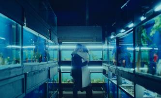 Little Fish: V pandemické romanci přicházejí nakažení o vzpomínky | Fandíme filmu
