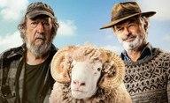 Rams: Před návratem k dinosaurům bude Sam Neill chovat berany | Fandíme filmu