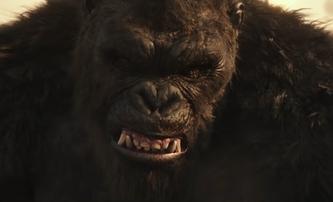 Godzilla vs. Kong: Demolice pokračuje v nejnovější upoutávce | Fandíme filmu