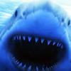 Shark Island: Modelky se vesele fotí a žraloci mají pré   Fandíme filmu