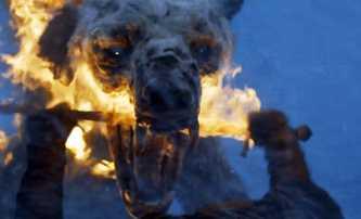 Cocaine Bear: Nejzfetovanější medvěd historie se chystá na filmová plátna | Fandíme filmu