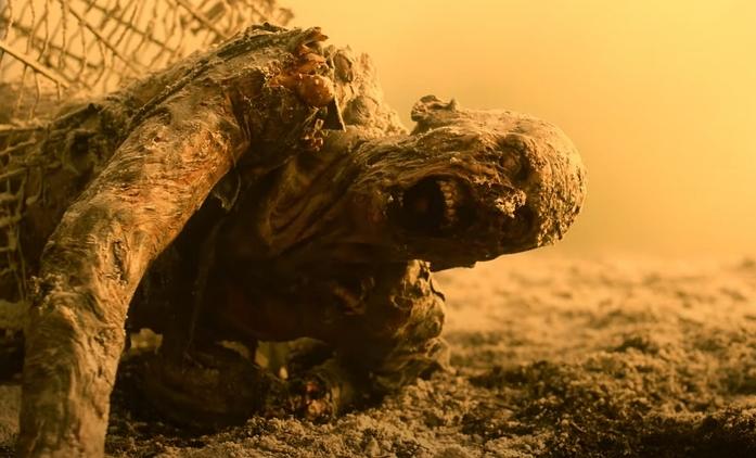 Živí mrtví: Počátek konce – Nová řada nás zavede do nukleární pustiny   Fandíme seriálům