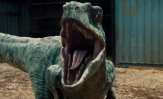 30 nejočekávanějších filmů roku 2015: Část II. | Fandíme filmu