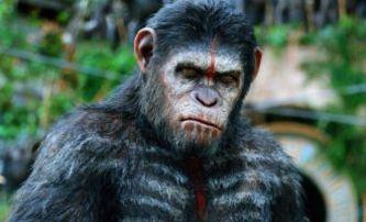 Box Office: My opice vládnout světu | Fandíme filmu