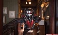 Ant-Man & The Wasp: První nová herecká posila obsazena | Fandíme filmu