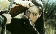 Assassin: Chválený epos o čínské vražedkyni | Fandíme filmu