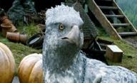 Harry Potter: Spinoff našel režiséra | Fandíme filmu