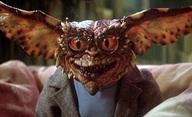 Chystá se remake Gremlins pod taktovkou Spielberga | Fandíme filmu