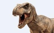 Jurassic World: Nové záběry z filmu | Fandíme filmu
