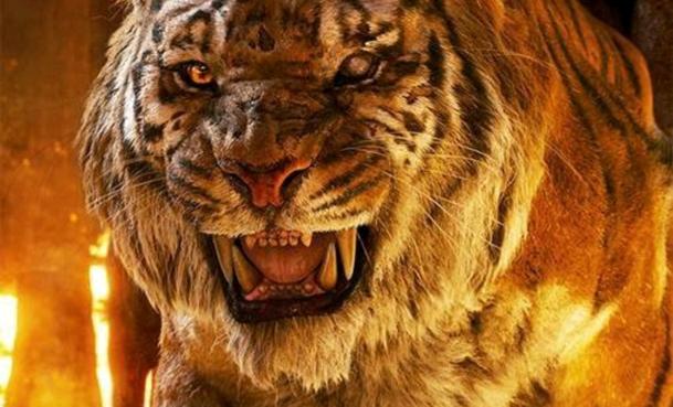 Kniha džunglí: Konkurenční projekt se stále chystá, mění název | Fandíme filmu