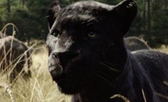 Kniha džunglí: Mezinárodní trailer | Fandíme filmu