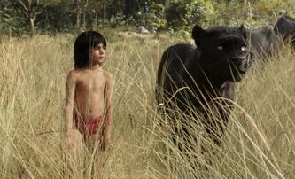 Kniha džunglí: Příběhový trailer | Fandíme filmu