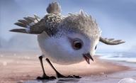 Piper: Nový krátký animák od Pixaru | Fandíme filmu