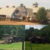 Rezistence: Natáčení pokračování Divergence začalo   Fandíme filmu