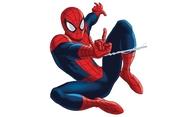 Animovaný Spider-Man se odkládá   Fandíme filmu