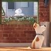 Tajný život mazlíčků | Fandíme filmu