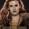 Twilight: Další pokračování se stále zvažuje | Fandíme filmu