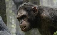 Úsvit Planety opic: Zdaleka nejlepší blockbuster sezony?   Fandíme filmu