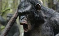 Čeká nás Válka o Planetu opic | Fandíme filmu