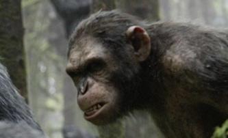 Úsvit Planety opic: Zdaleka nejlepší blockbuster sezony? | Fandíme filmu