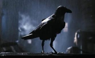 Nová Vrána našla svého představitele | Fandíme filmu