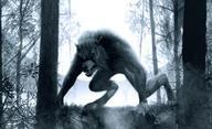 Werewolf: The Beast Among Us - Další pokus o restart klasiky   Fandíme filmu