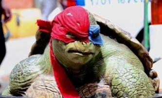 Želvy Ninja 2: Opět se mluví o Krangovi | Fandíme filmu