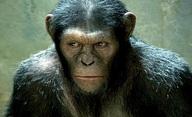 Zrození planety opic: Jaká je budoucnost? | Fandíme filmu