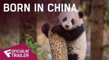 Born In China - Oficiální Trailer | Fandíme filmu