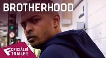 Brotherhood - Oficiální Trailer   Fandíme filmu